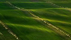 Morava - AM13photography Golf Courses, Country Roads, Landscape, Photos, Scenery, Pictures, Corner Landscaping