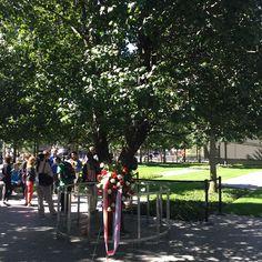 Inspiring Photography: Survivor Tree-WTC Memorial