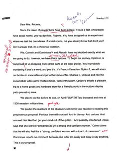 best essays english language