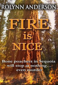 Sequoia National Park is the setting where park rangers struggle to save treasures from poachers. Mystery, suspense and romance all the way! Mystery Genre, Mystery Novels, Park Rangers, Thrillers, Nice, Ebooks, Romance, Pdf, Romance Film