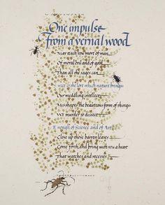 DonaldJackson,Oneimpulsefroma vernalwood. (He is scribe to Queen Elizabeth II.)