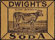 Antique Advertisement Graphics Cow Image on Flour Sack Towel from http://knickoftimeinteriors.blogspot.com/2014/01/new-reader-submissions-fe...