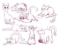 Pombei Art - Illustration - Animals and Creatures - Drawing Base, Cat Drawing, Drawing Sketches, Animal Sketches, Animal Drawings, Drawing Animals, Drawing Reference Poses, Cat Reference, Warrior Cats Art