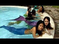 http://youtu.be/vpICzCKoxZc En Manila, Filipinas, hay una Academia de Sirenas de natación. Es un sueño hecho realidad, para aquellas que desean ser sirenas.