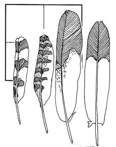 How to Make Something Like Feathers to the Scale of Your Clay Feather Template, How To Make Something, Crafts For Kids, Arts And Crafts, Bird Party, Craft Club, Black Magic, Event Ideas, Party Ideas