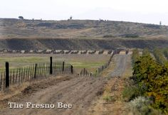 A dirt and gravel road, leading east of Avenue 15, will be a main entrance to the McCaffrey 5,200-home Tesoro Viejo development in Madera County. JOHN WALKER