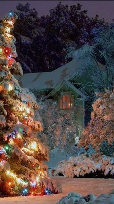 Enjoy these peaceful and dreamy Christmas scenes! Perfect to get you into the cozy Christmas spirit this season! Christmas Scenery, Noel Christmas, Outdoor Christmas, Country Christmas, Christmas Pictures, Winter Christmas, Magical Christmas, Beautiful Christmas Scenes, Xmas Pics