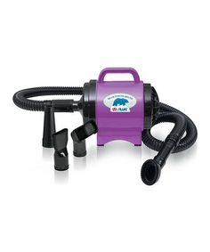 Loving this Purple Bear Power Pet Dryer on #zulily! #zulilyfinds