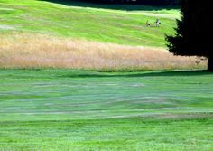 Golfers can discover a first class international golf course in Echternach.