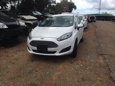 Fiesta 2014 (3/16) Junker Chito 787-877-8346