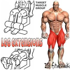 DOUBLE TAP FOR MORE #FITNESSWIKI . TAG FRIENDS WHO WILL BENEFIT FROM THIS POST!  . LEG EXTENSIONS  Main Muscle Worked:Quadriceps  1.  For this exercise you will need to use a leg extension machine. First choose your weight and sit on the machine with your legs under the pad (feet pointed forward) and the hands holding the side bars. This will be your starting position.Tip:You will need to adjust the pad so that it falls on top of your lower leg (just above your feet). Also, make sure ...