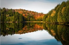 """We've got some serious """"leaf peepers"""" on VT – where is your favorite spot to see the seasons change color?"""