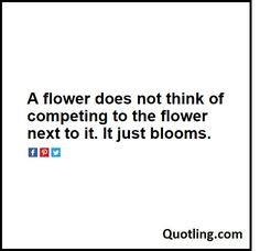 A flower does not think of competing to the flower next to it. It just blooms. –…