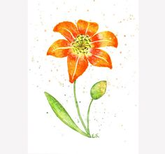 Lily painting Original watercolor art Plant painting Orange red yellow flower wall art Day lily Floral spring home decor by BluePalette on Etsy https://www.etsy.com/listing/275857628/lily-painting-original-watercolor-art