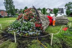 Lager gigantisk jubileumsbukett til byens befolkning. Ansvaret for installasjonen har Magdalena Shlosta hatt, og Emilie Rybom er en av blomsterdekoratørene som har laget den.