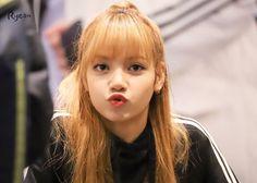 blink, lisa, and yg image Kim Jennie, Jenny Kim, Yg Entertainment, South Korean Girls, Korean Girl Groups, Square Two, Rapper, Thai Princess, Lisa Blackpink Wallpaper