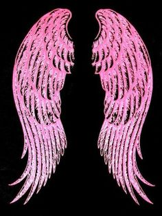 These Pink Wings are meant for flying :)