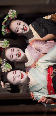 2016 舞妓 祇園甲部 佳つ雛さん 佳つ江さん まめ藤さん 2016 maiko, Gion Kobu, Katsuhina, Katsue, Mamefuji