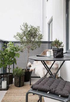 Small-balcony-furnishing-styling-interior-small-balcony-design-styling-balkonmöbel-möbel-balkon-design-klapptisch – l e o n o r e – diy - Balkon Ideen 2020 Small Balcony Design, Tiny Balcony, Outdoor Balcony, Outdoor Decor, Balcony Ideas, Balcony Gardening, Modern Balcony, Outdoor Plants, Potted Plants
