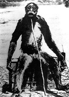 Just Another Ape? by Dr Helene Guldberg