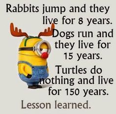 Quotes about Minions Top 370 Funny Quotes With Pictures Sayings 67