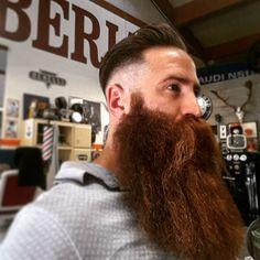 The Envious Beard : Photo