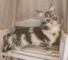 羊毛フェルトのリアル系サイベリアンです。上品なお顔立ち、大人しく存在感のある猫さんです。ハートのチャームはレジンです。ゴールドのクリスタルアイ、ひげ以外はすべ...|ハンドメイド、手作り、手仕事品の通販・販売・購入ならCreema。