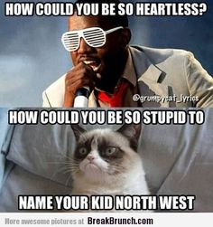 How could you be so stupid to name your kid North West – lolcat