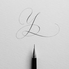 Letter Y tho. One more to go! #ep_letters #pencilcalligraphy #pencillettering #abcs_y