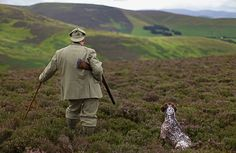 One man and his dog: Grouse shooting - A Gamekeeper Makes His Final Preparations Ahead Of The Glorious Twelth