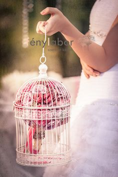 vintage birdcage with bride