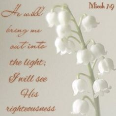 Micah 7:9. My Beloved will bring me into the light ! I will see His righteousness face to face :)