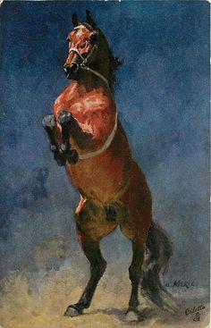 Brown horse on hind legs/ O. Merte'