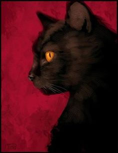 Made by: Sylvain Sarrailh , Black Cat (I love the contrast with the red background) - Illustration Black Cat Painting, Black Cat Art, Black Cats, Black Kitty, I Love Cats, Cool Cats, Red Cat, Here Kitty Kitty, Cat Drawing