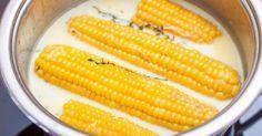 ¿Te gusta el maíz? Te enseñamos a cocinarlo como se debe – La voz del muro
