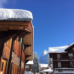 Fresh #pow on a sunny day. Anything else you need?  #mürren #schilthorn #myswitzerland #jungfrauregion #yesweski #ski #snowboard #chalet #typical #swiss #swissalps #alps #snow #wanderlust #winter #winterwonderland #travel #travelling #europe #instadaily #murren by murrengimmelwald