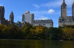 Central Park Fall 2013