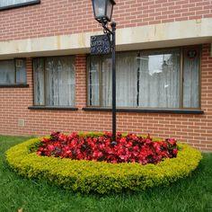 Flores y jardines en Bogotá