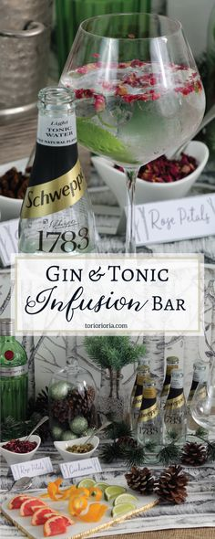 Tips to Create your own Gin & Tonic Infusion Bar