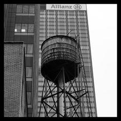 NYC 006 - the box Carlalberto Amadori
