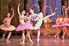 Le Corsaire, Helsinki Tutu Costumes, Ballet Costumes, Dance Leaps, Dance Pictures, Helsinki, Spin, Ballerina, Fantasy, Spaces