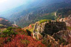 【香川県 寒霞渓(小豆島)】200万年の歳月が創りだした日本屈指の渓谷美・寒霞渓は日本三大渓谷美に数えられ瀬戸内海国立公園を代表する景勝地のひとつ。そそり立つ奇岩絶壁の中をいくロープウェイからの眺めは絶景。春夏秋冬と四季折々の表情を楽しめます。 http://www.my-kagawa.jp/point/point.php?id=266 #Kagawa_Japan #Setouchi