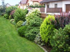 backyard designs – Gardening Ideas, Tips & Techniques Privacy Landscaping, Outdoor Landscaping, Front Yard Landscaping, Outdoor Gardens, Evergreen Garden, Patio Planters, Farmhouse Garden, Shade Garden, Dream Garden