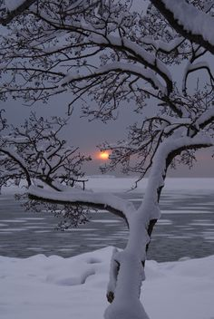 Snow & Sunset