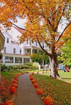 Reminds me of houses in Vermont in fall. Just wait to see how they dress it up spooky at Halloween! Love New England! They celebrate fall, and then Halloween! Beautiful Homes, Beautiful Places, Autumn Aesthetic, Fall Pictures, Fall Images, Autumn Inspiration, Autumn Ideas, Fall Season, Fall Halloween