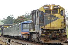 Transporte de trens-unidade para o Metro de São Paulo