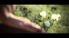 Jesse & Joy - Me Quiero Enamorar (Video Oficial) (+lista de reproducción)