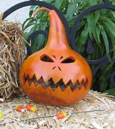 birdhouse gourd art