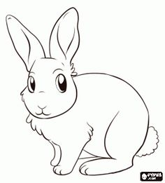 bunny rabbit coloring page 2 easter colouring fluffy bunny and bunny rabbit