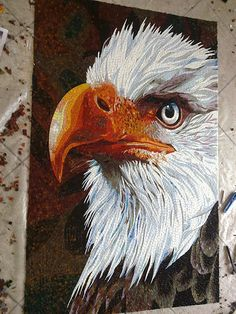Eagle-- Flickr - Photo Sharing!  Jing Guang Liao photographer